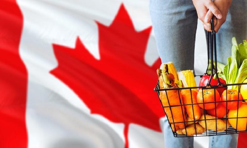 قیمت کدام اقلام غذایی در کانادا پس از پاندمی بیشترین افزایش را داشته؟
