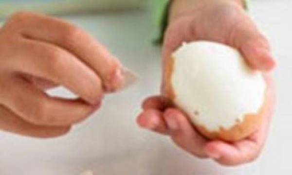 8 ماده غذایی برای کاهش اشتها